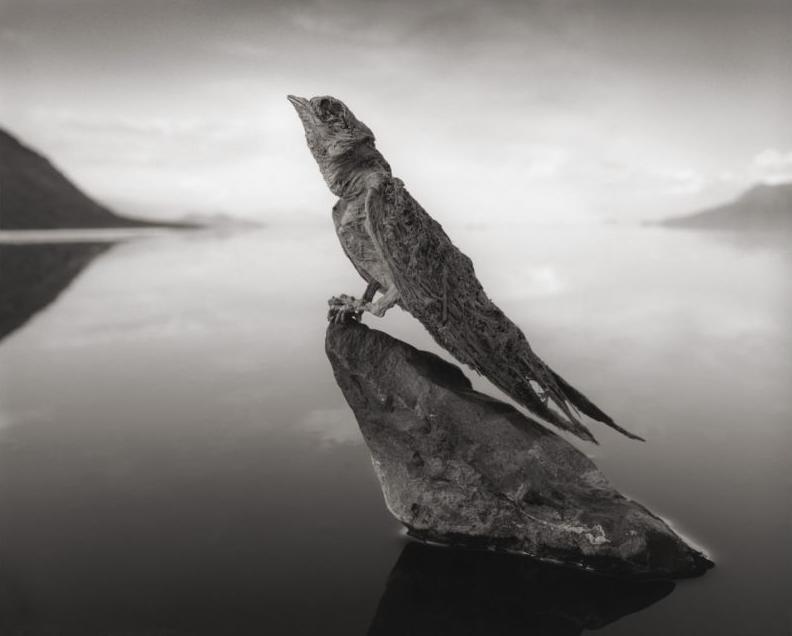 lago-natron-ii